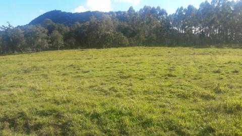 1143t - Sitio em Rio do Campo 30.000m², Rio do Campo